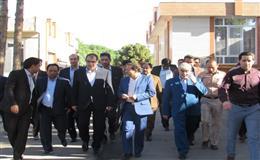 وزیر بهداشت وهیات همراه به فردوس آمدند